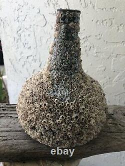 Tall early Black glass onion bottle covered with barnacles / Florida